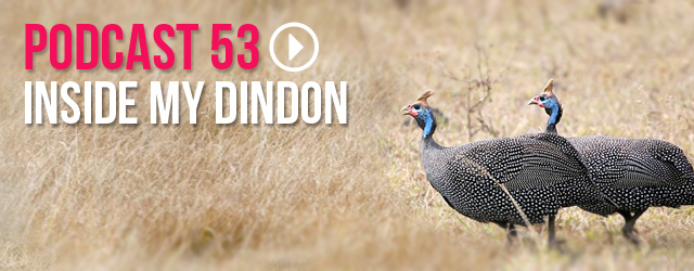 53 : Inside my dindon